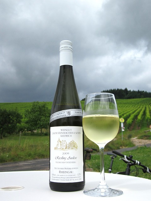 Vinos blancos alemanes Rheingau